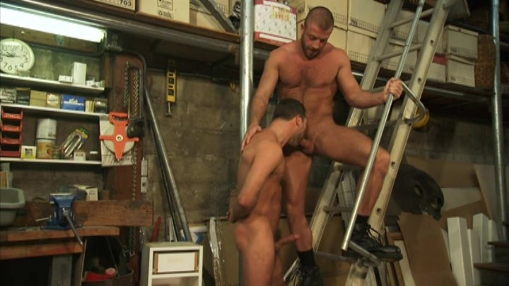 Free Gay Stud Movies 71