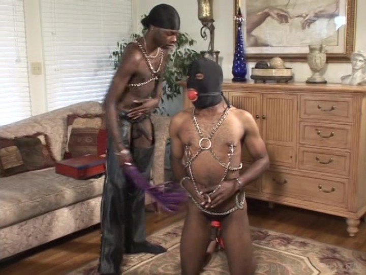 gay bondage tribe