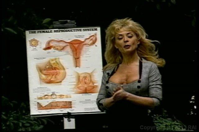 Pornodarstellerin Nina Hartley detaillierte Gebrauchsanweisungen, räumt mit.