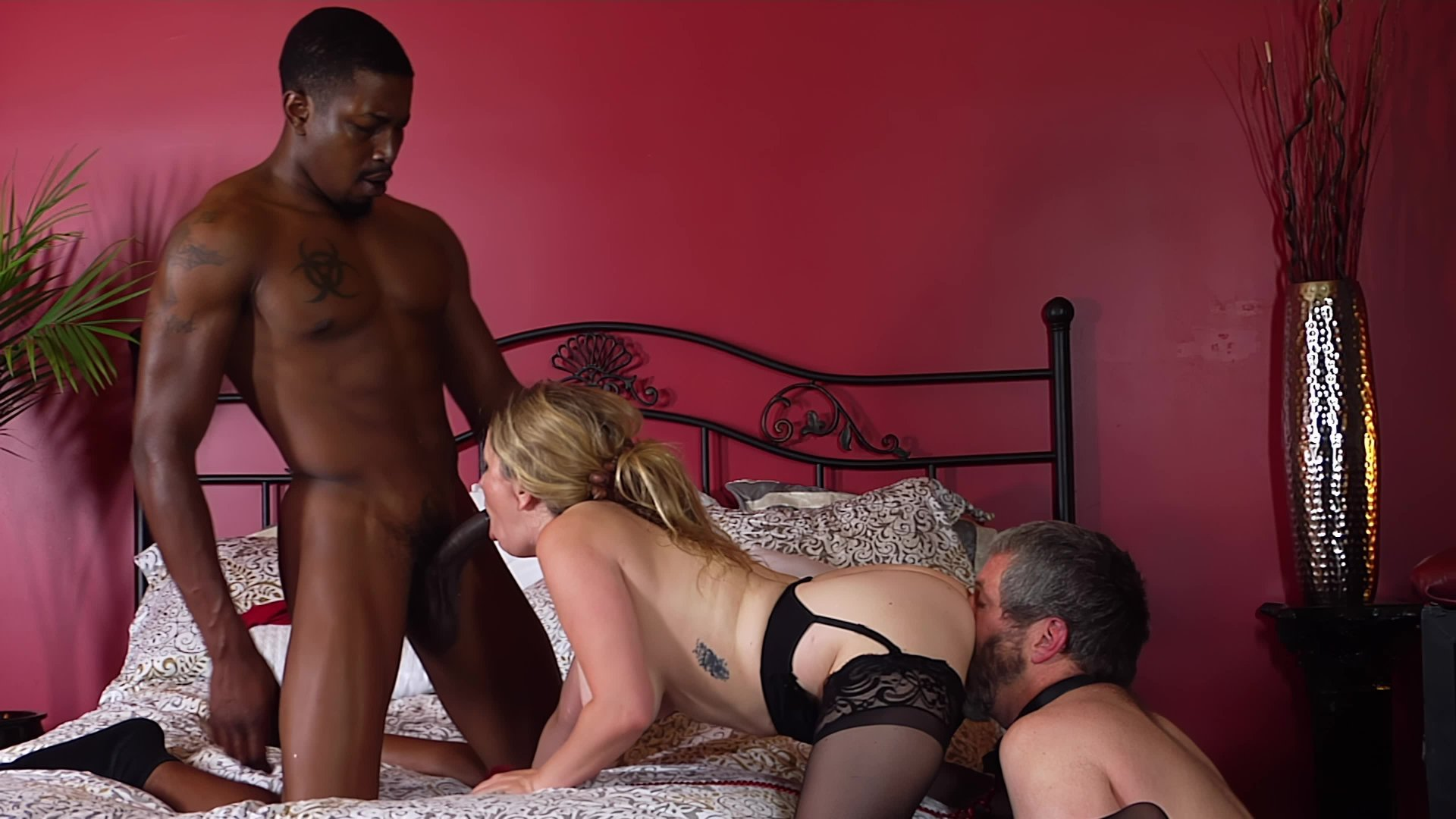 Free Video Preview image 3 from Kinky Cuckold 2