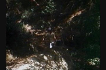 Scene Screenshot 1900393_01770