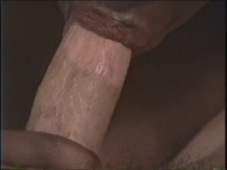 Streaming porn video still #6 from Black Pussy & White Dicks