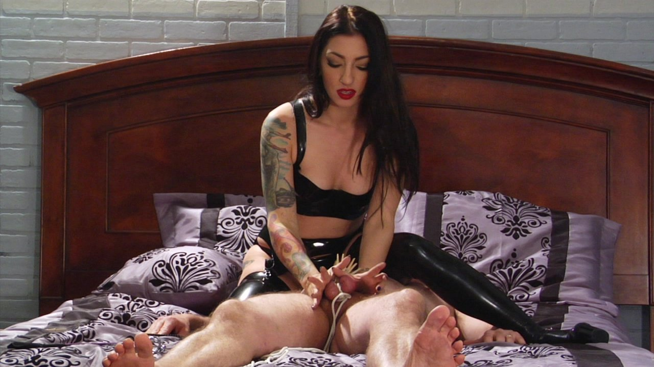Cybill Troy Is Vicious 2017  Adult Dvd Empire-1258
