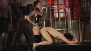 Screenshot #2 from Cybill Troy Is Vicious