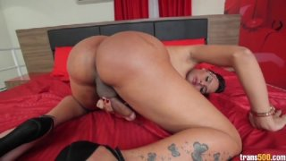 Streaming porn video still #4 from TS Cock Strokers 6