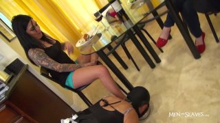 "Streaming porn video still #7 from Sissy Boys ""Good Gurls Serve"""