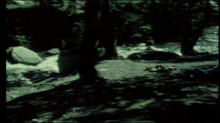 Scene Screenshot 1711775_03210