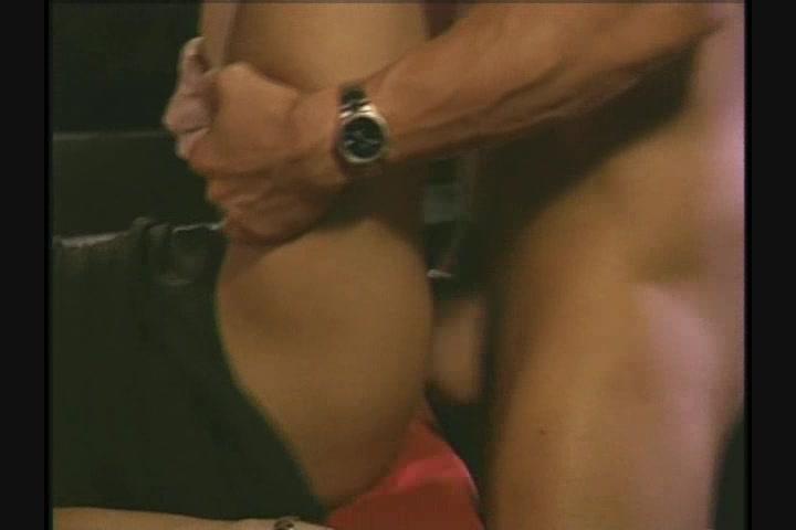 Vivid dvd sex lies taylor hayes