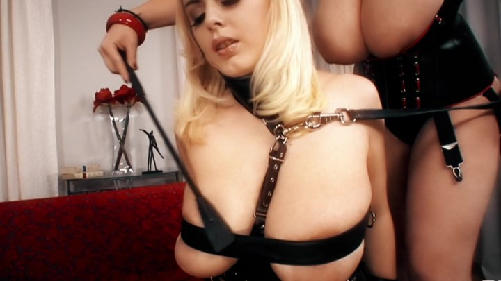 Streaming porn video still #2 from Bodacious Babes Vol. 3