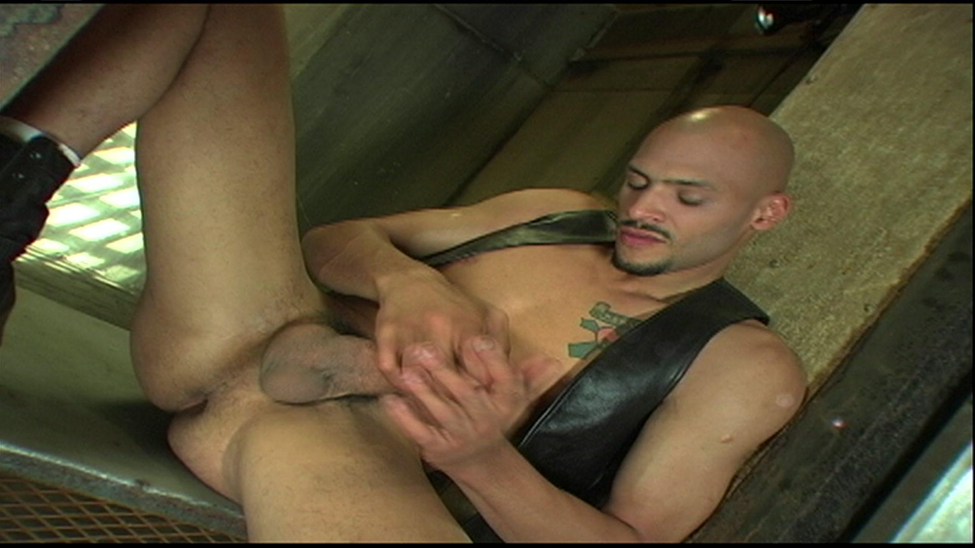 Nino Bacci Porno nino bacci gay star | www.freeepornz