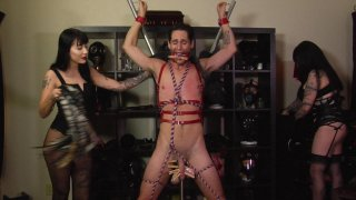 Screenshot #18 from Perversion And Punishment 12