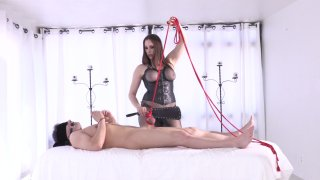 Streaming porn video still #1 from Strapdomme 3: Back To The Pegging