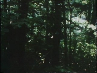 Scene Screenshot 3002746_02130