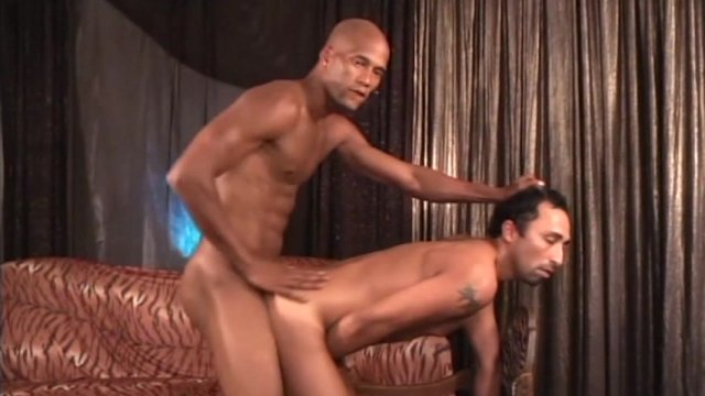 Streaming porn video still #7 from Bareback Interracial
