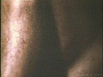 Scene Screenshot 1323448_02080