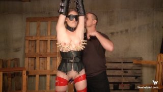Streaming porn video still #8 from MaleDom Mania