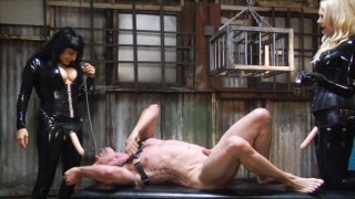 Streaming porn video still #1 from Perversion And Punishment 8