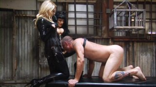Streaming porn video still #8 from Perversion And Punishment 8