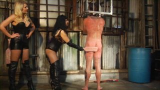 Screenshot #20 from Perversion And Punishment 8