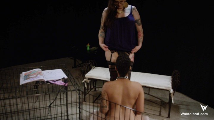 Streaming porn video still #1 from Thank You Mistress, May I Have Another?