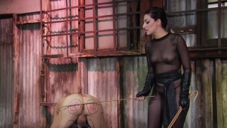 Streaming porn video still #6 from Kink School: An Advanced Guide To BDSM