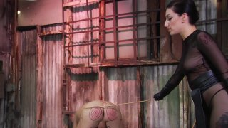Screenshot #18 from Kink School: An Advanced Guide To BDSM