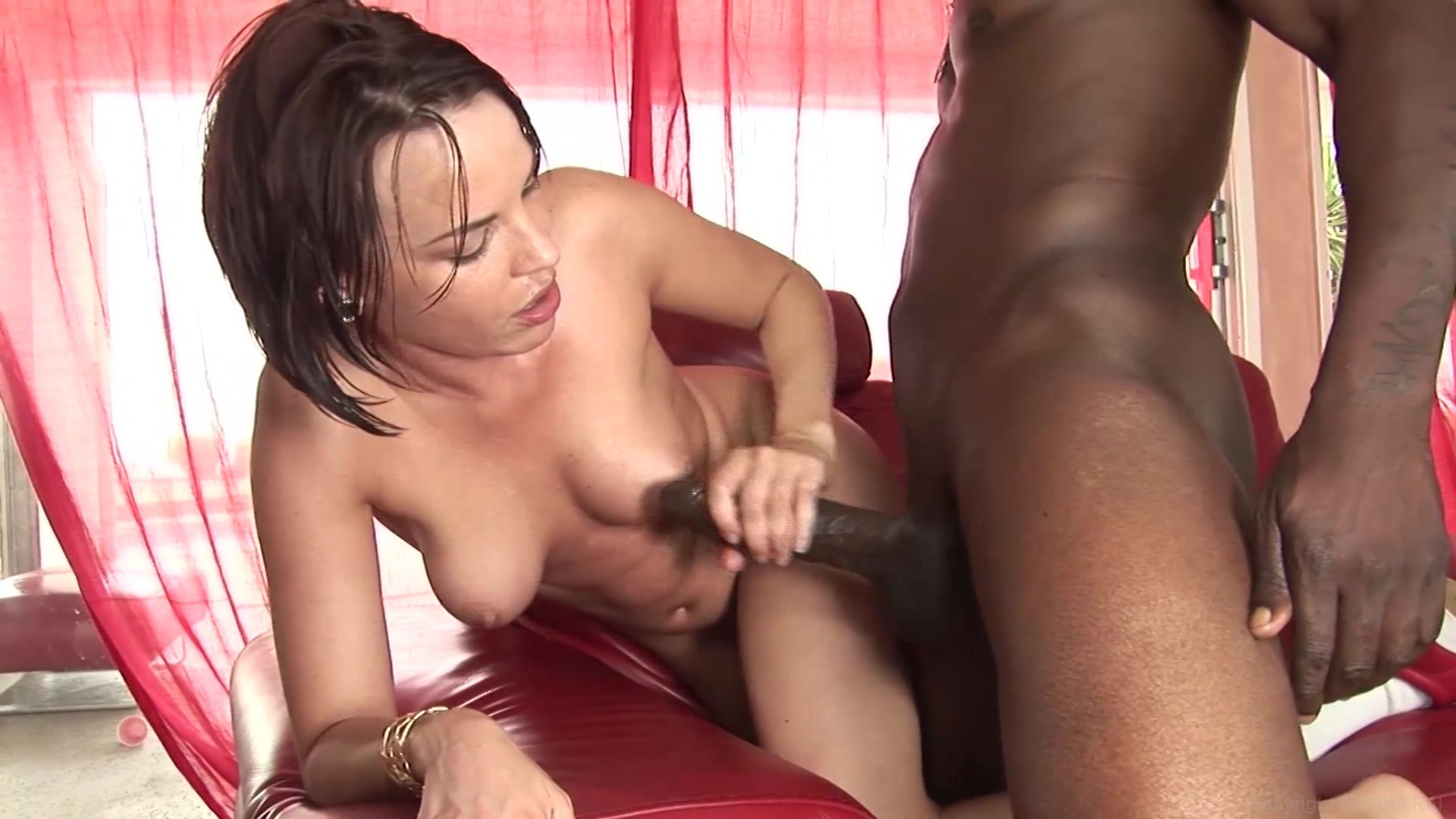 Vintage hairy pussy creampie compilation beeg photoz