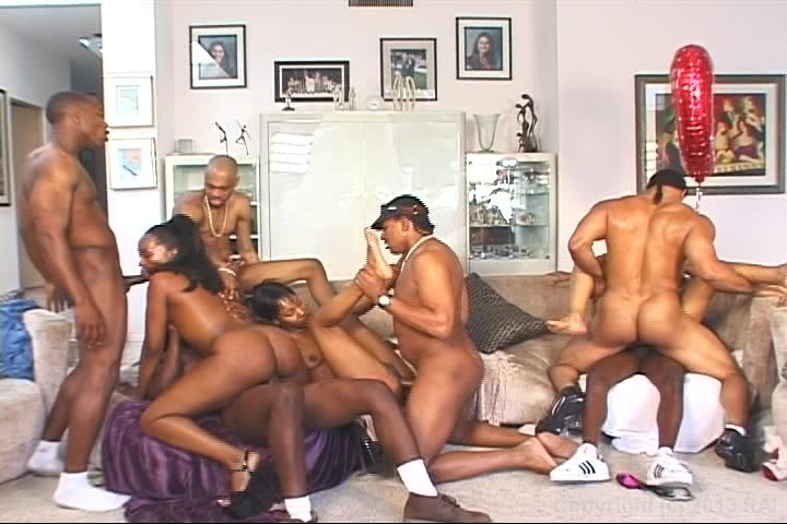 Orgy world brown and round 3
