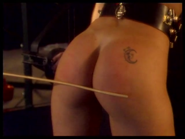 Streaming porn video still #4 from Bondage Babes 2