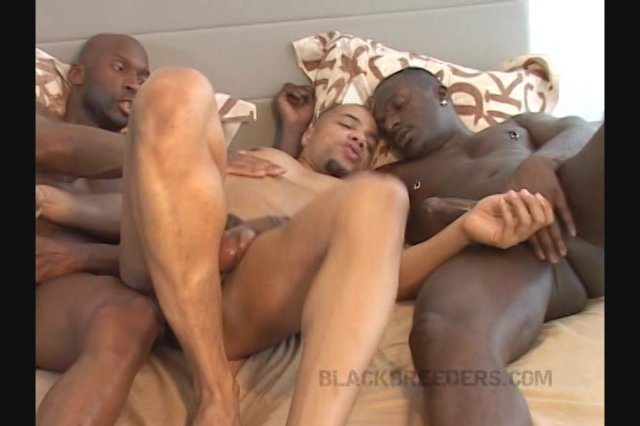 Streaming porn video still #1 from Real Raw Holes of Harlem: Raw Harlem Holes 3, The