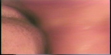 Scene Screenshot 1477251_04310