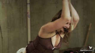 Streaming porn video still #5 from Fistful Of Submissives, A