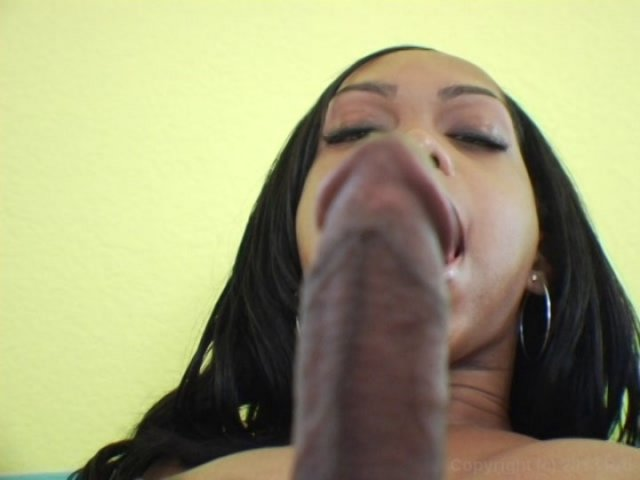 Streaming porn video still #1 from Black Tranny Whackers 4