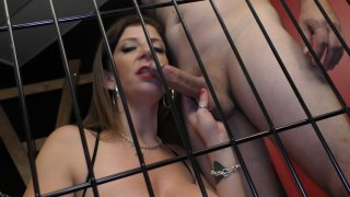 Streaming porn video still #3 from FemDom Cuckold Blowjobs
