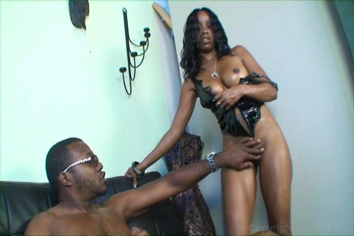 Black Panther Milf Adult Rental
