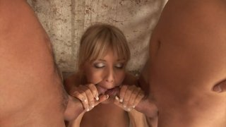 Screenshot #2 from Euro Anal Experience, The
