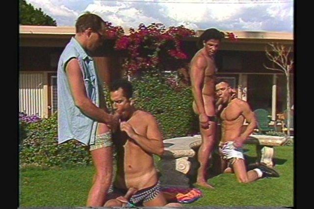 Joe springer's orgy in auburn